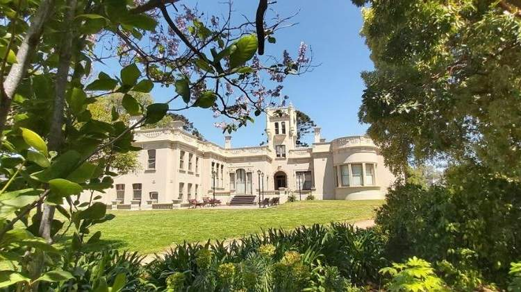 Grand historic mansion photographed through bushes of large grassed gardens.