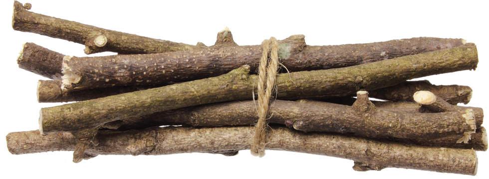 Bundled branches