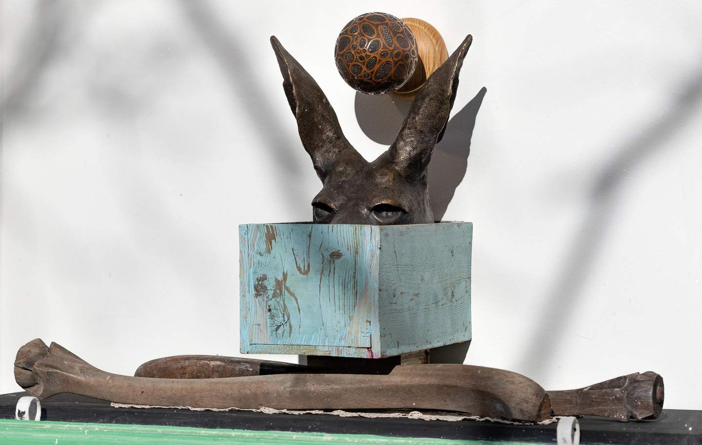 A sculpture depicts an ornate doorknob fixed above a bronze kangaroo head that sits in a box above two carved wooden bones.