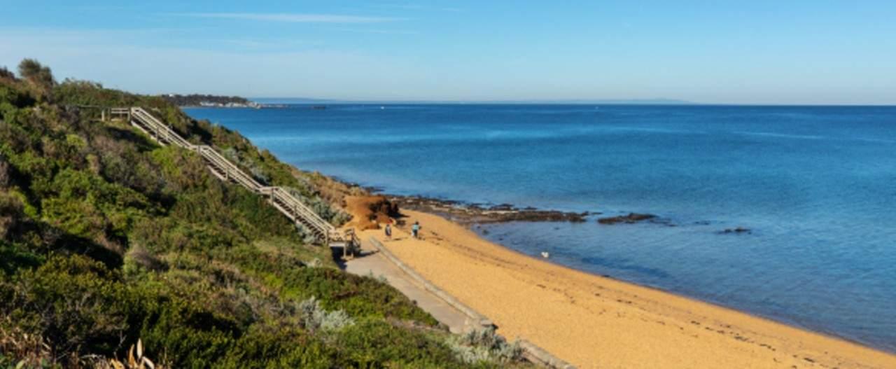 Two people walking at Sandringham beach near coastal area