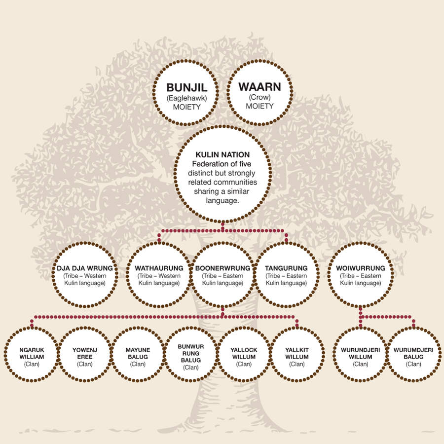 Bayside Indigenous nation structure tree diagram