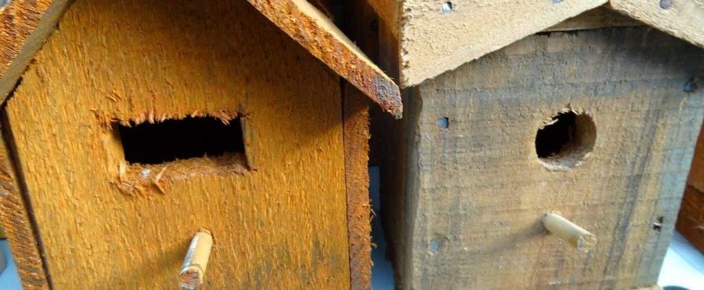 Close up of handmade birdbox.